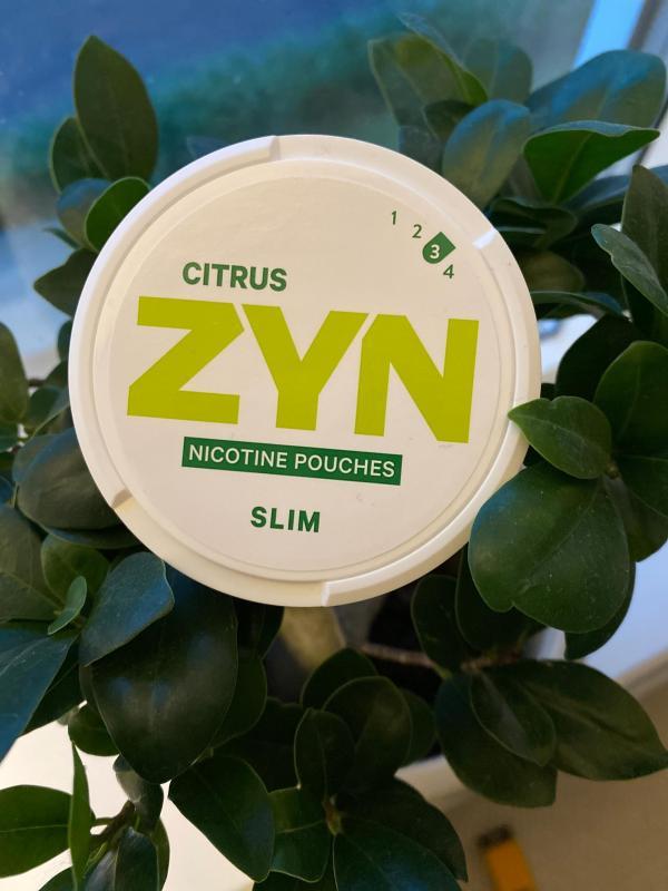 ZYN Citrus Slim Review